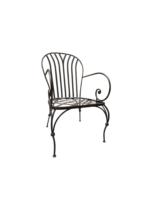 PARIS ARM CHAIR WITHOUT CUSHION