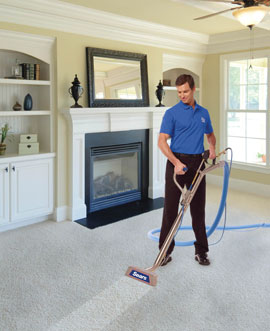 Carpet-Cleaning-Professional