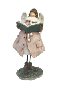 PINK ANGEL READING BOOK