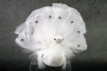 WHITE AND SILVER TAIL UP PEACOCK ON CLIP (6)