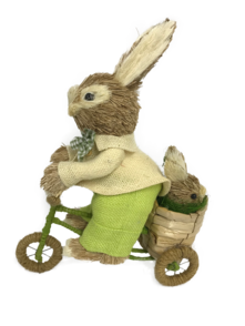 BOY BUNNY ON BIKE