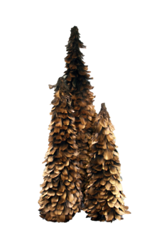 45CMH GOLD FEATHER CONE