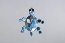 BLUE JEWEL TURTLE (12)
