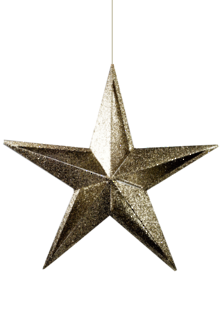 28CMH CHAMPAGNE FIVE TIP CUT OUT STAR (6)