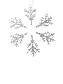 25CMD CLEAR/SILVER ACRYLIC SNOWFLAKE (12)