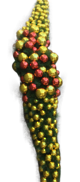360CML GARLAND PREDECORATED RED & GOLD