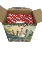24PCS DISPLAY SANTA BOXING PENS