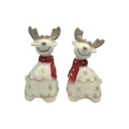 CERAMIC SALT & PEPPER SHAKER