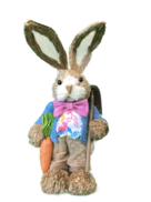 BOY STRAW BUNNY WITH BLUE JACKET & PINK BOWTIE