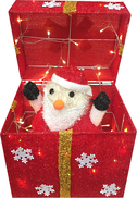 POP UP SANTA IN RED BOX