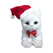 WHITE CAT WITH SANTA HAT