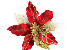 25CMD RED/GOLD POINSETTIA (12)