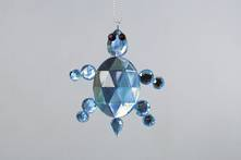 BLUE JEWEL TURTLE (12)