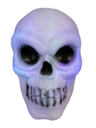 TALKING/GLOWING SKULL SKULL
