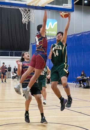basketball d