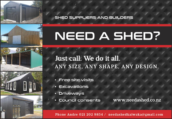 Need A Shed HP 19102-page-001-603