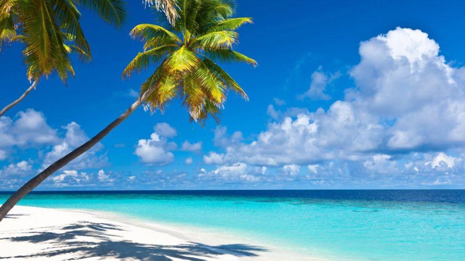 Noumea-New-Caledonia-905x509