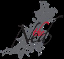 The Ned Logo _no Marl-683-336-333-709