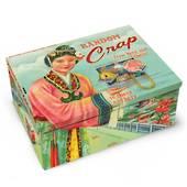 Cigar Box - Random Crap