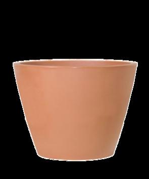 Table Cone