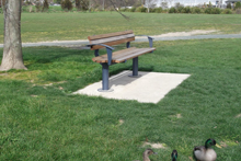 Civic Seat in Saxton Field Reserve Nelson