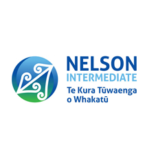 NelsonInt-web-logo