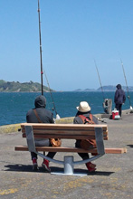 Seaview Seat Petone Jetty oc