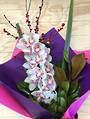 Striking long lasting pastel bouquet