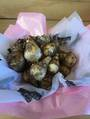 Fortune Daffodil Bulbs Gift Wrapped in Basket