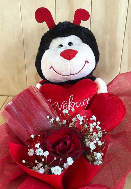 vday front pic