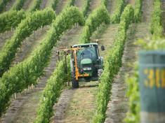 80Hp Vineyard Tractor