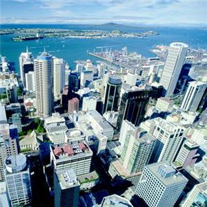 NZ Detector Dogs can assist building managers with keeping their Apartment  Buildings Drug Free