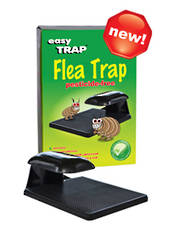 Easy Trap Flea Trap