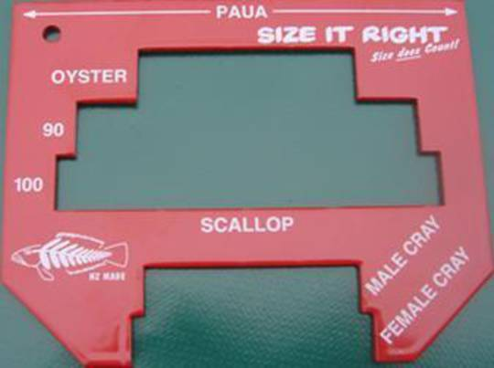 Size it right Measuring Tool