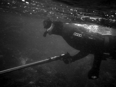 Spearfishing_Articles_Jet_Kings2.jpg