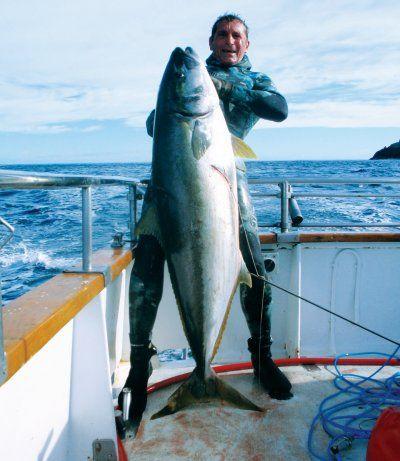spear_fishing_giant_knig_fish.1.jpg