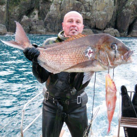 Spearfishing_large_snapper.JPG