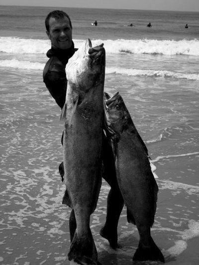 spearfishing_white_sea_bass.jpg