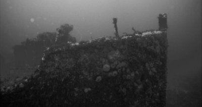 wreck_spearfishing.jpg