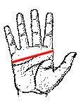 HAND_1.jpg