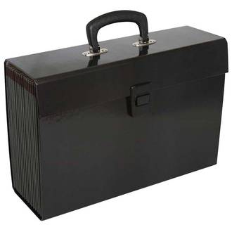 FM Vivid Expanding File Black