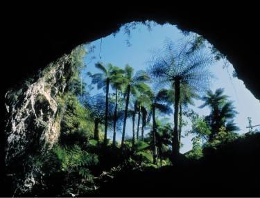 Orakei Korako Cave and Thermal Park.