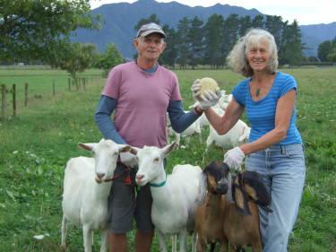 Aroha Organic Goat Cheese