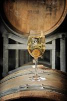 Serensin-Organic-Wine-Producer-Organic-Explorer1