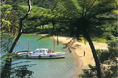 Search for ecotourism experiences & transport in NZ