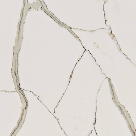 Calacutta Blanco