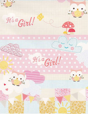 Folded Wrapping Paper Baby Girl Owls