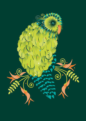 New Zealand Card Birds Of A Feather Kakapo