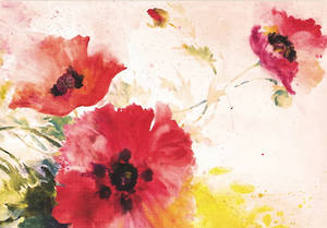 Box of 14 Notecards Poppies