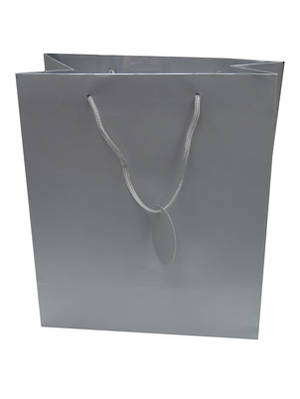 Extra Large Gift Bag Silver